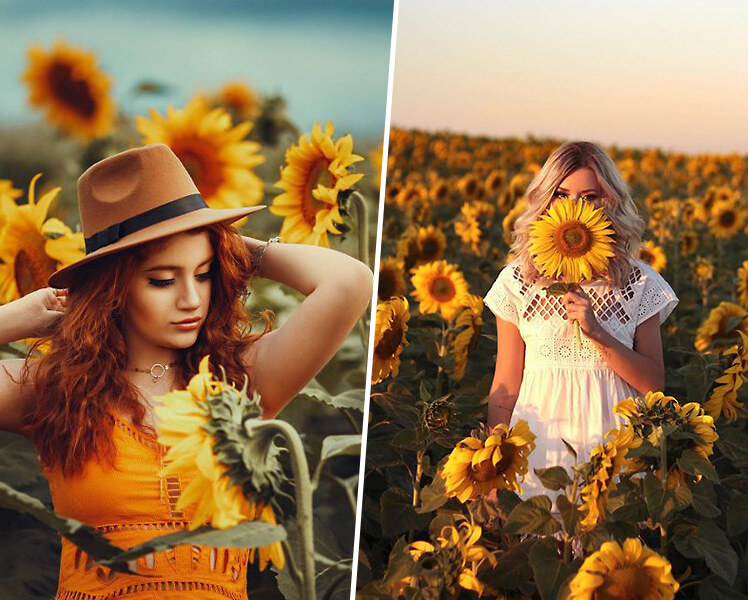 идеи для фотосессии в подсолнухах для девушек