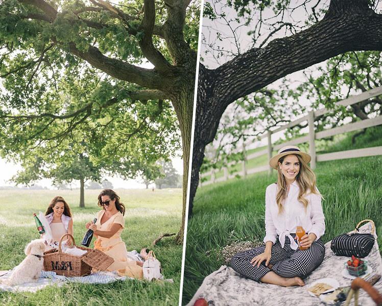 идеи для фотосессии пикник летом
