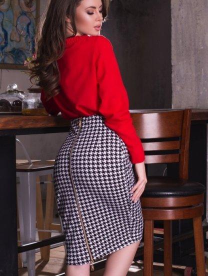 Высокая юбка на талии с молнией сзади в принт гусиная лапка, фото 1